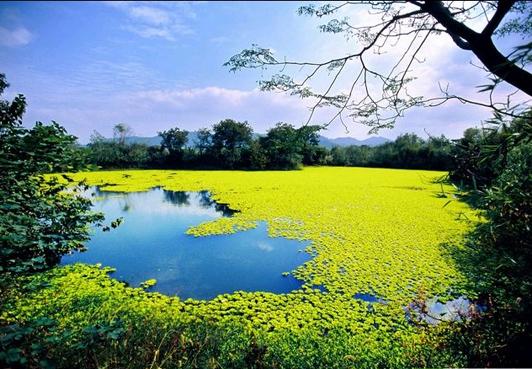 Sumber pelancongan di taman tanah paya negara xixi di bandar hangzhou