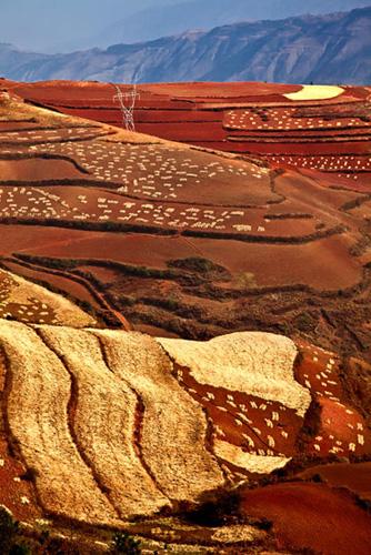 Tanah Merah di Dongchuan Yunnan yang Mempesonakan