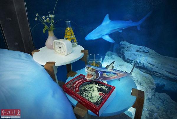 Kini Pelancong Boleh Menempah Bilik Tersebut Melalui Internet Untuk Menghayati Bermalam Dengan Ikan Jerung Sebanyak Tiga Malam Pada Bulan April